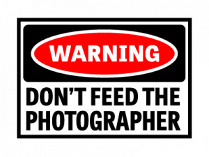 Don't feed the wedding photographer